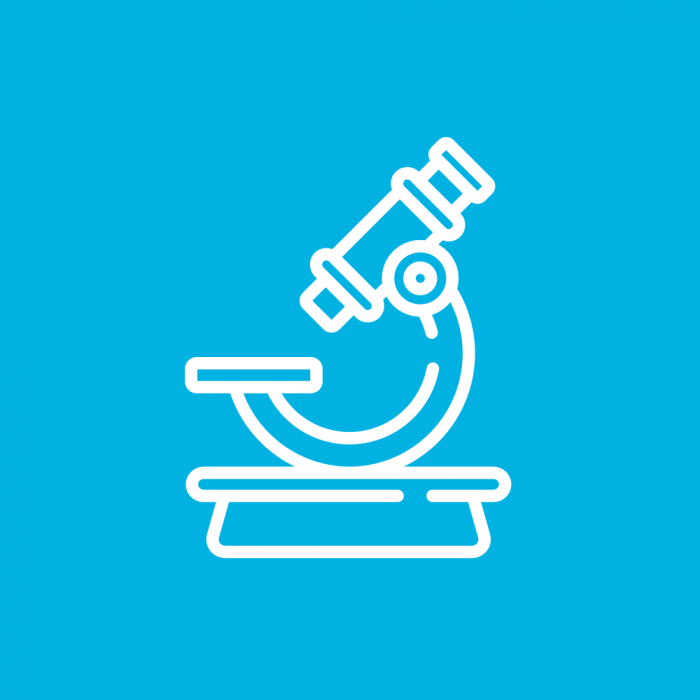 Research and Transition Icon